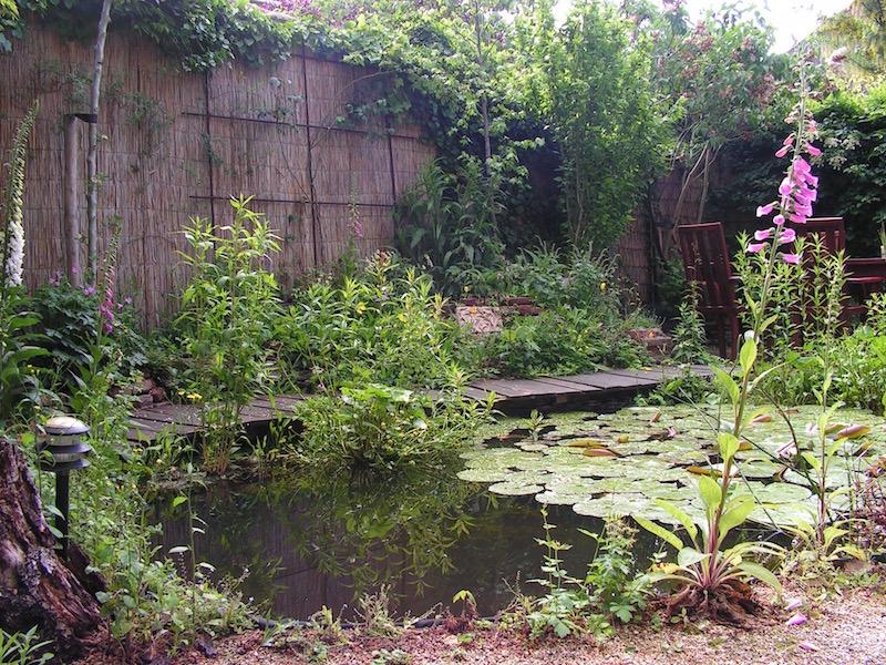 waterrijke tuin